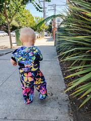 Walking off to the stairs (quinn.anya) Tags: eliza toddler sidewalk plants walking