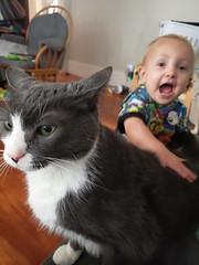 VITTY! (quinn.anya) Tags: eliza toddler vitya vitty cat excited petting