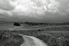 Aubrac (Yvan LEMEUR) Tags: aubrac lozère météorologie orage nuages immensité solitude pluie marchastel nasbinals extérieur landscape paysage nature nb noiretblanc bw blackandwhite clôture muretdepierressèches