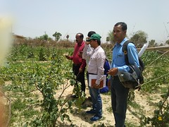 Visit by NABARD, Koderma, Jharkhand to observe ATG's interventions through the project 'Enhancement of income of the MICA collector communities' Visit by NABARD, Koderma, Jharkhand