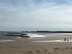 (c_e_s) Tags: llanddwynisland anglesey wales newboroughwarren newborough