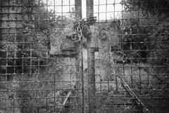 Smena 1 (camera_holic) Tags: ilford hp5 plus 35mm black white old expired glos gloucestershire locked chain gate gates sharpness dock docks port rail railway line berkeley branch closed gmomz mmz cmena smena 1 plastic viewfinder soviet russian camera