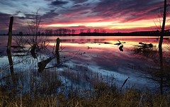 Amanecer (pascual 53) Tags: canon colores amanecer laguna navarra 1635mm 5ds ablitas largaexpo viento