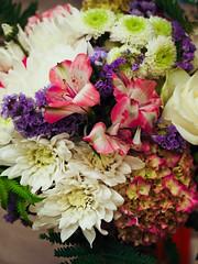 flower show-8171281 (E.........'s Diary) Tags: eddie ross newburgh fife scotland olympus omd em5 mark ii aug 2eddierossnewburghfifescotlandolympusomdem5markiiaug2019newburghflowershow