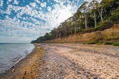 Steilküste bei Nienhagen mit dem Gespensterwald 4426 (Peter Goll thx for +13.000.000 views) Tags: nienhagen steilküste gespenterwald ostsee balticsea ocean meer beach stand wood wald buchen nikonnikkor nikonz6 z6 nikkor1424