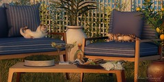 Lazy Sunday.... (ѕнαяηα) Tags: secondlife cosmopolitan cosmo uber hive armoniadecor dahlia mutresse