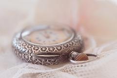 No Time (Macro Mondays - Closed) (hehaden) Tags: watch pocketwatch antique silver net macro macromondays closed sel90m28g