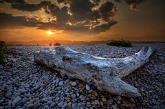 Oropesa del Mar (photodkx) Tags: wood sunset stones spain notripod nofilters cloud isolated