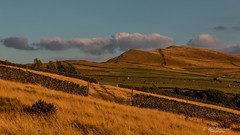 Gateway (Through_Urizen) Tags: category derbyshire england hayfield landscape places snakepathtwentytrees evening stonewall greatbritain uk unitedkingdom clouds sky bluesky canon canon70d canon1585mm countryside rural nature natural gate gateway grass fields peaks hills mountains cattle farms trees sunglow goldenhour littlehayfield peakdistrict panorama