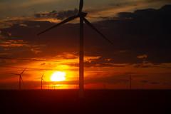 Last Light (Aphélie) Tags: mongolia mongolie steppe éolienne windmill sun set coucher soleil
