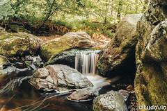 Hoegne, Sart-Lez-Spa (BE) 18 (Lцdо\/іс) Tags: hoegne hoëgne water wat nature promenade ballade balade sart jalhay ardennen ardennes ardenne wallonie wallone région province liège liege treking forêt forest rock lцdоіс