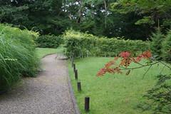 A point of red (しまむー) Tags: pentax k30 da 35mm f28 macro limited natural ナチュラル 東北大学 植物園 tohoku university botanical garden 青葉山