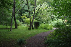 To the garden (しまむー) Tags: pentax k30 da 35mm f28 macro limited natural ナチュラル 東北大学 植物園 tohoku university botanical garden 青葉山