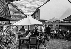 August Gathering (14) Monochrome ( Ricoh GR III Compact) (markdbaynham) Tags: rioch gr grd ricohgr ricohgriii griii compact ricohdigital highendcompact people dog canine smalldog smallcanine apsc 28mm fixedlens prime primelens wideprime wideangle