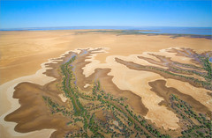 Tidal Mudflats, Derby Western Australia_0460 (Irwin Reynolds photo eXpressions) Tags: mangroves derby arialphotography patternsinnature thekimberley abstractpatternsinnature kimberleywesternaustralia tidalmudflats mangroveswamps kimberleycoast derbywesternaustralia westernaustraliankimberley