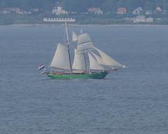The Dutch schooner Avatar in Öresund (frankmh) Tags: ship tallship schooner avatar dutch öresund