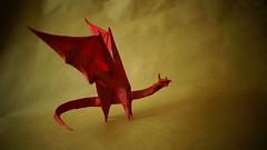 Simple dragon by Shuki Kato (ilja11) Tags: origami red dragon reddragon origamidragon shukikato paper simpledragon beautiful papercraft japan westerndragon