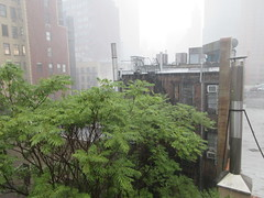 2019 Rainy Sunday Afternoon Hells Kitchen Clinton 8175 (Brechtbug) Tags: 2019 rainy sunday afternoon hells kitchen clinton near times square broadway nyc 08182019 new york city midtown manhattan rain shower summer august storms showers downpour deluge wet drops drop dropping down weather building fog like foggy hell s nemo southern view soaker soak soaking