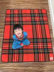 Y'all Need To Get The LEGO Picnic Blanket (fbtb) Tags: lego picnic blanket