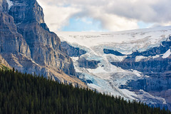 Glacier (Kirby Wright) Tags: icefield parkway canada jasper banff national park alberta glacier ice snow mountain mountains treeline pine forest cloud cliffside cliff tall ridge nikon d750 tamron 150600mm f563