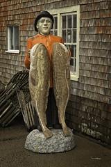 Scenes of Peggys Cove Nova Scotia 2 (wfgphoto) Tags: peggyscove