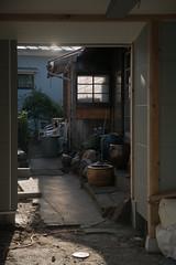 patio (kasa51) Tags: patio house building yokohama japan window light shadow 庭