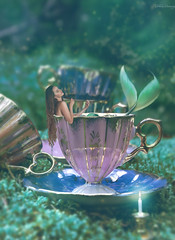 Settled In Wonderland (Felicia Brenning) Tags: wonderland bath mermaidbath mermaid mermaidart merpeople merfolk waternymph siren miniature miniaturephotography miniscene miniaturescene teacup cup cups teacups forest woods fantasy fantasyphotography fantasyportrait fairytalephotography fairytale surreal surrealism surrealphotography surreality conceptual conceptualportrait conceptualportraiture conceptualphotography selfie selfportrait selfportraiture imagination imaginative inspiration dreamy dream photomanipulation photographyart manipulation photoshop artsy art nikon nikond5600 nikonphotography feliciabrenning flickr