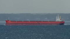Bulker Ultra Panther just before the rain (frankmh) Tags: ship bulkcarrier ultrapanther öresund