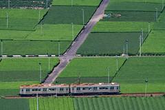 1DX_6211 (masousizuka) Tags: 大井川鐵道 鉄道