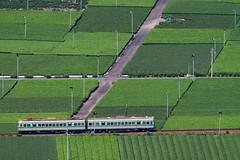 1DX_6204 (masousizuka) Tags: 大井川鐵道 鉄道