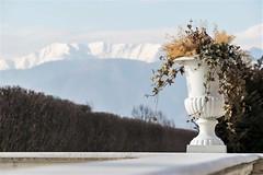 Turijn, Garden of Venaria Reale. (parnas) Tags: turijn torino italia reggiadivenariareale garden alps