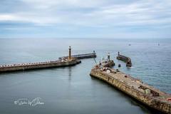 SJ2_0115 - The East and West Piers at Whitby (SWJuk) Tags: whitby england unitedkingdom swjuk uk gb britain yorkshire northyorkshire yorkshirecoast whitbypiers pierextensions landscape seascape seaside sea northsea blue bluesky clouds cloudy flat calm horizon 2019 jul2019 summer holidays nikon d7200 nikond7200 nikkor1755mmf28 rawnef lightroomclassiccc