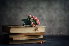 Books + Berries (Janet_Broughton) Tags: lensbaby velvet56 books berries stilllife