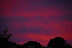 Laines-aux-Bois 1 August 2019 011 (paul_appleyard) Tags: lainesauxbois france aube august 2019 summer evening sky light purple red