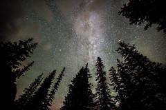 YYY_2062 (Christy Turner Photography) Tags: nightscape nightskies nightphotography auroraborealis northernlights alberta nights