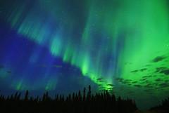 Blue Heart- Christina Lake, Alberta (Christy Turner Photography) Tags: nightscape nightskies nightphotography auroraborealis northernlights alberta nights
