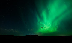 19772266000_7318d60a65_o (Christy Turner Photography) Tags: nightscape nightskies nightphotography auroraborealis northernlights alberta nights
