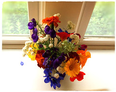 A Beautiful Arrangement (77ahavah77) Tags: flower flowers yellow purple red colors arrangement maine nature blossoms blooms