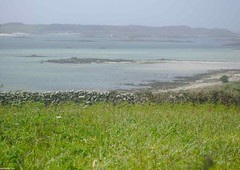 DSC01821 (amancalledalex) Tags: islesofscilly cornwall may spring atlanticocean