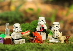 Three Stormtroopers on a Picnic (To Say Nothing of the Dog) (timofey_tkachev) Tags: picnic lego minifigure afol stormtrooper