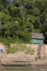 Madre de Dios River (Kusi Seminario) Tags: casa house boat bote deslizador rainforest selva tropic tropico jungle amazon amazonas river rio madrededios tambopata puertomaldonado ceccot travel nature outdoors peru southamerica sudamerica latinamerica