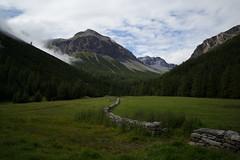 Val Vau (Grisons) (Toni_V) Tags: leica hiking 28mm rangefinder mp leicam digitalrangefinder messsucher elmaritm12828asph type240 typ240 m2401519 summer alps schweiz switzerland europe suisse sommer alpen svizzera wanderung randonnée 2019 graubünden grisons svizra escursione grischun valmora 190819 ©toniv stmariabuffalora nationalparkpanoramaweg valvau pizpraveder
