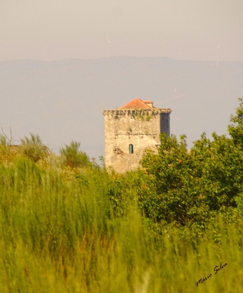 Águas Frias (Chaves) - ... torre de menagem do castelo de Monforte de Rio Livre, por entre o verdejante arvoredo ...