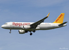 Pegasus Airlines A320-200 TC-DCA (birrlad) Tags: stansted stn airport london uk aircraft aviation airplane airplanes airline airliner airways airlines arrival arriving approach finals landing runway airbus a320 a320200 a320214 tcdca pegasus