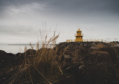 Lighthouse urban Reykjavik (Bjarni53) Tags: reykjavik urben iceland summer morning nikon d7500 sigma 1770 f28 traveling urban urbanphotography landscapephotography backround background lighthouse tower sea grass flat photography simple minimalistic stones rocks