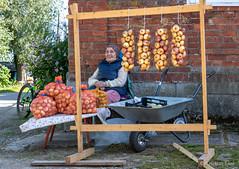 Vana-Kasepää sibulamüüja (BlizzardFoto) Tags: vanakasepää sibulamüüja onionseller müüja seller sibulatee onionroad sibulad onions saadused products sibul onion küüslauk garlic müük sale