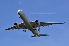 Cathay Pacific B-LRP Airbus A350-941 cn/101 @ EDDF / FRA 16-08-2019 (Nabil Molinari Photography) Tags: cathay pacific blrp airbus a350941 cn101 eddf fra 16082019
