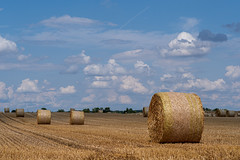 A little bit of green between blue and yellow | IMGP6400-2 (horschte68) Tags: feld field stroh strawbales gelb yellow golden blue blau grün green summer sommer ernte harvest outside aussen strohballen perspektive perspective wolken himmel cloudysky clouds