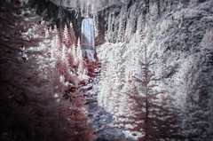 Tumalo Falls in Bend, Oregon (Infrared) (Russell Eck) Tags: tumalo falls bend oregon tetherow infrared long exposure longexposure waterfall water forest nature landscape wilderness travel russell eck color nikon