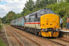 37419 at Brundall 2P20 1236 Norwich - Great Yarmouth 17/08/19. (chrisrowe37419) Tags:
